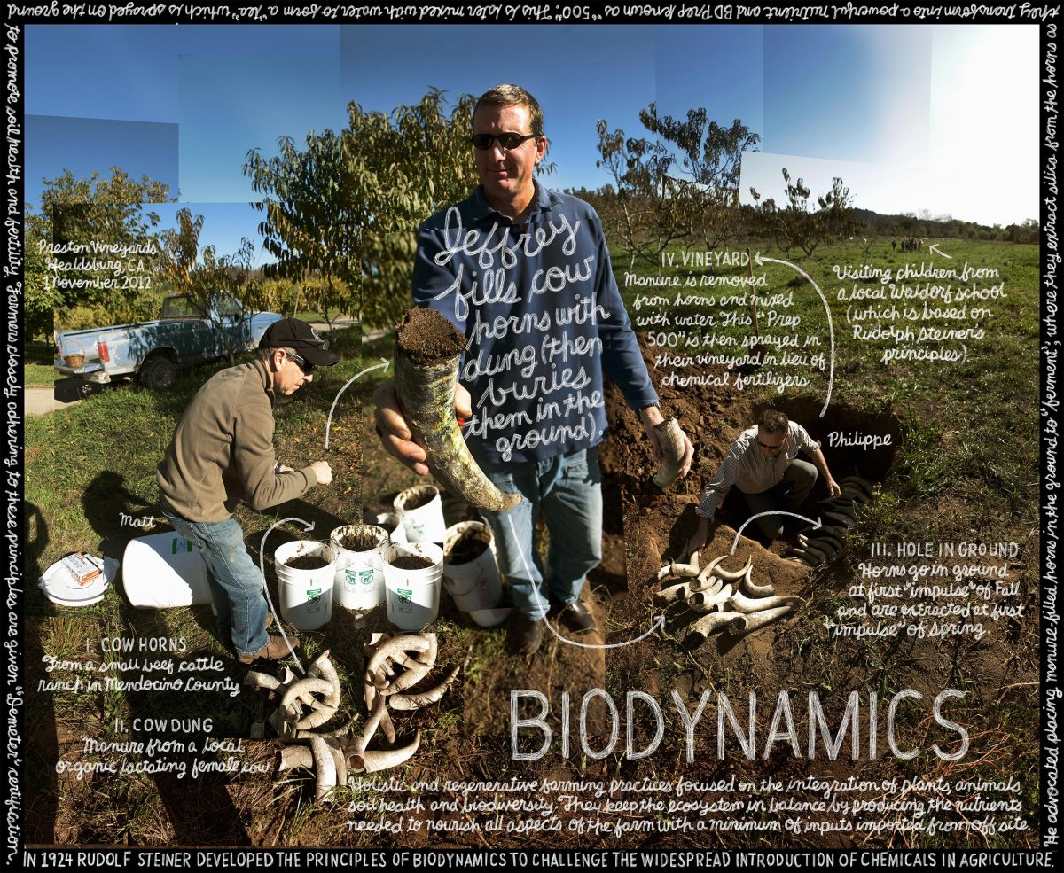 LEX158_Biodynamic_FINAL_FIXED-5715